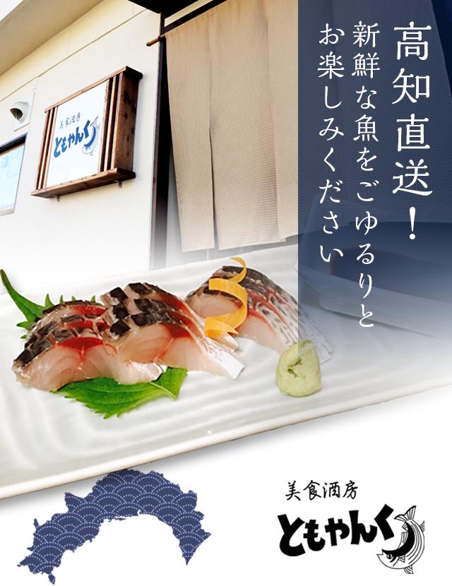 高知直送! 新鮮な魚をごゆるりとお楽しみください